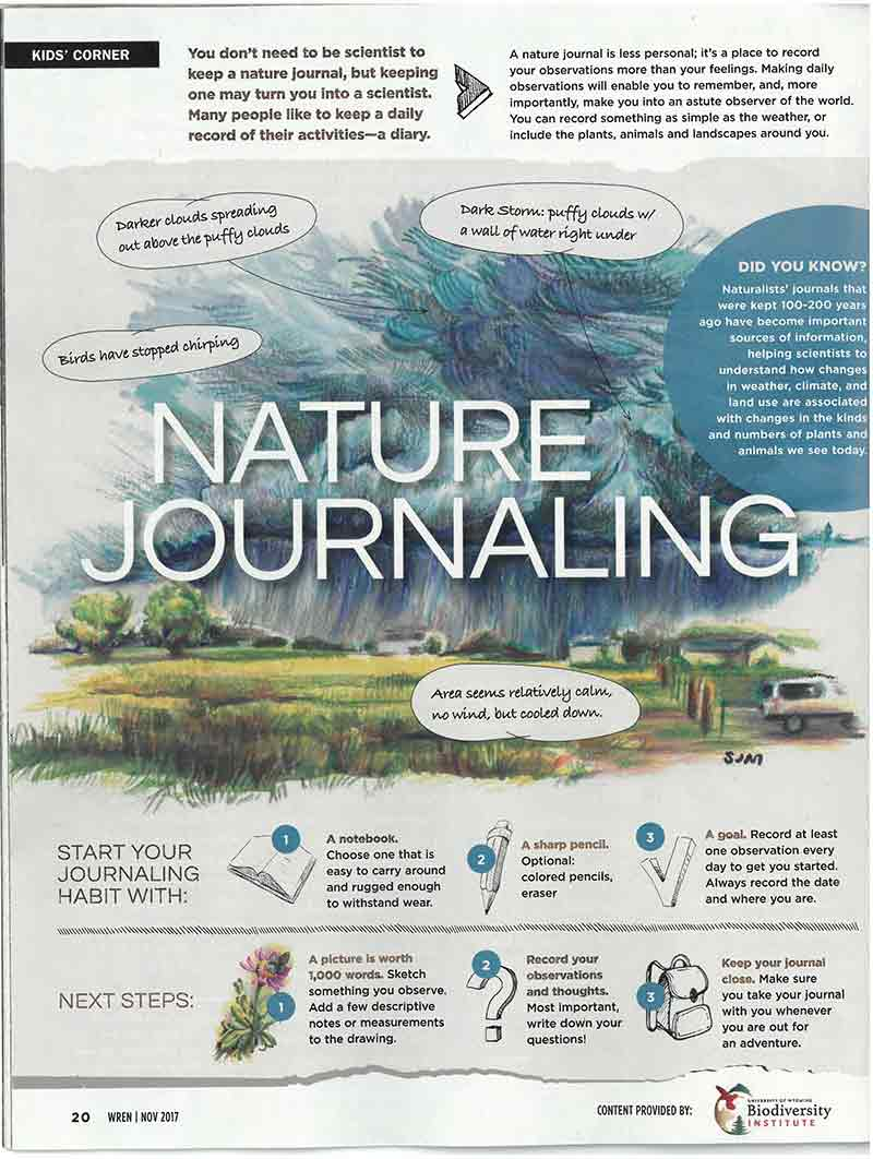 An illustrative image of a Wren article on nature journaling